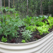 Raised Bed Compact Space